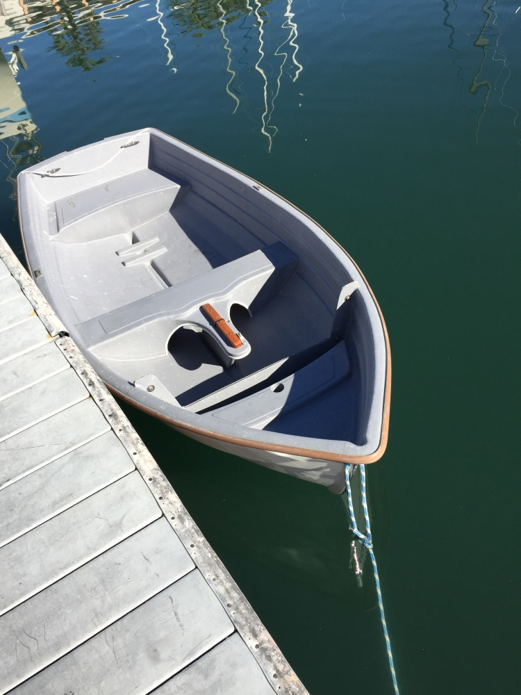 Navigator without Outboard and Dinghy Dogs